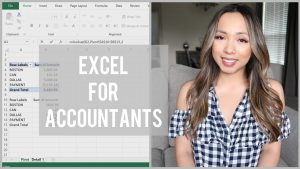 EXCEL FOR BEGINNERS, Auditors & Accountants