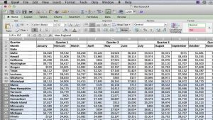 How to Add Lines on an Excel 2007 Sheet : MS Excel Tips
