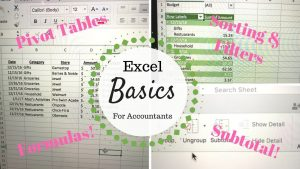 Excel Basics | For Accountants |
