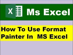 How To Use Format Painter In  MS Excel ? || MS Excel Tips and Tricks