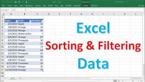 Excel Sorting and Filtering Data