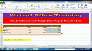 How to Calculate Profit Margin Percentage in Microsoft Excel : Excel Tips and Tricks